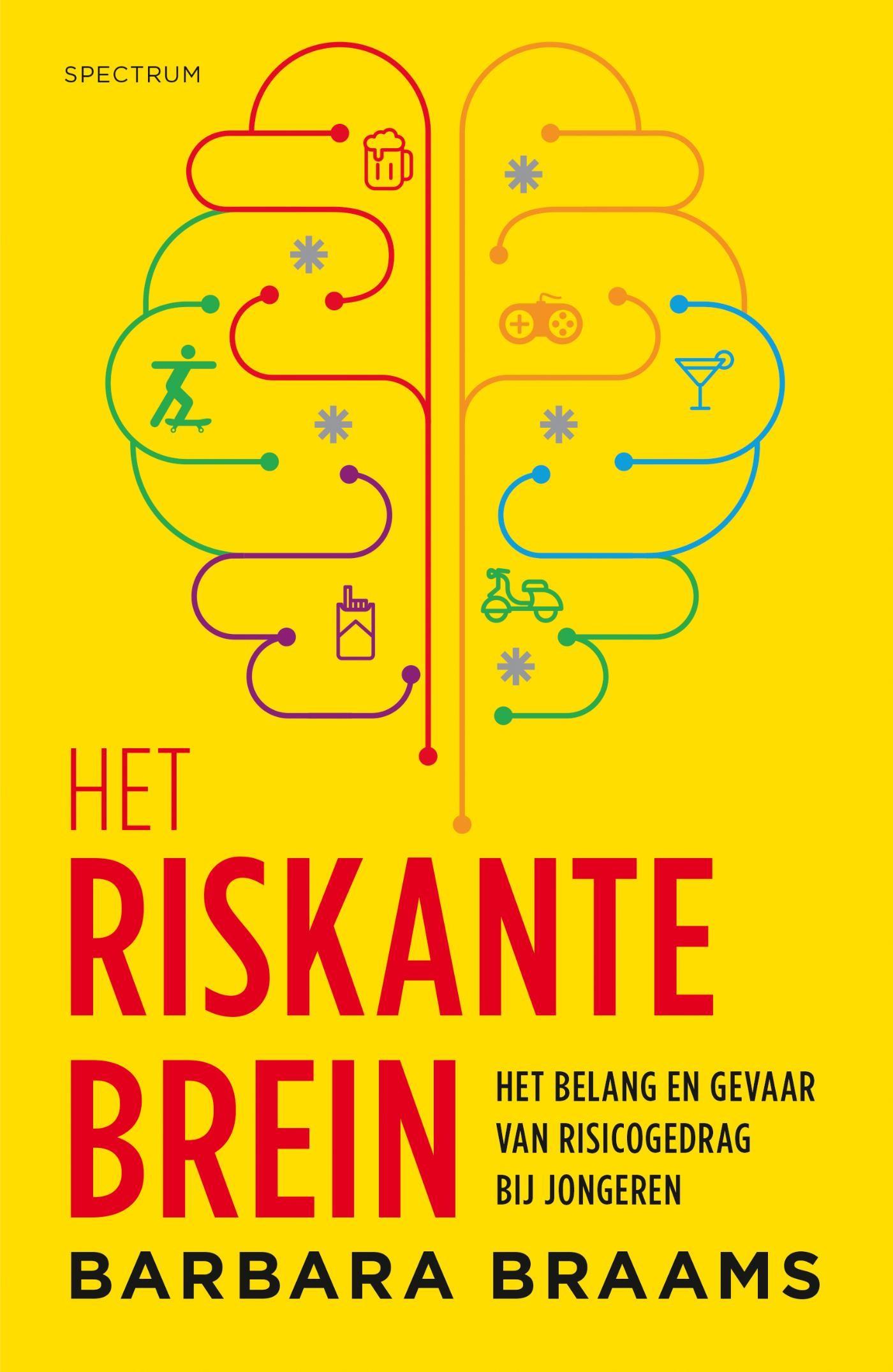 Boekcover - Het riskante brein